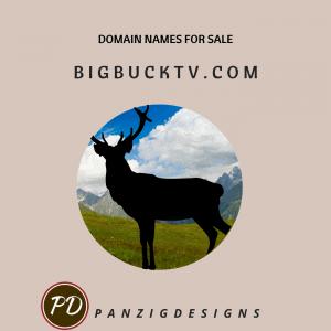 Domain Names for Sale- bigbucktv.com